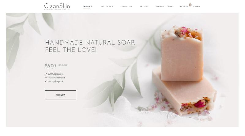 CleanSkin WordPress Themes