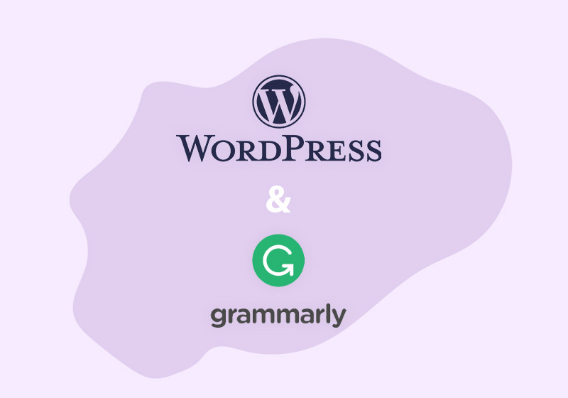 How to Use Grammarly for WordPress to Level up Content