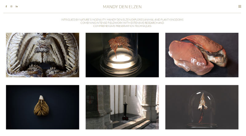 Mandy Denelzen