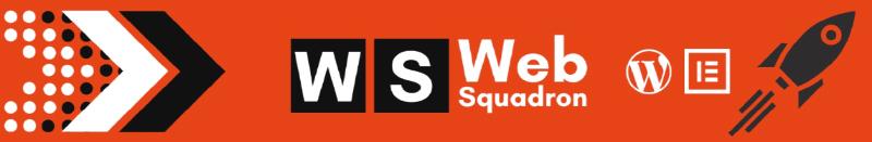 Web Squadron